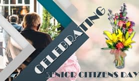 senior-citizen-thumbnail