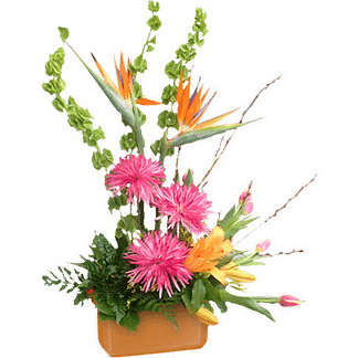 Flower arrangement for any occasion with birds of paradise, bells of Ireland, cremones, daylilies, tulips, pussy willow and greenery