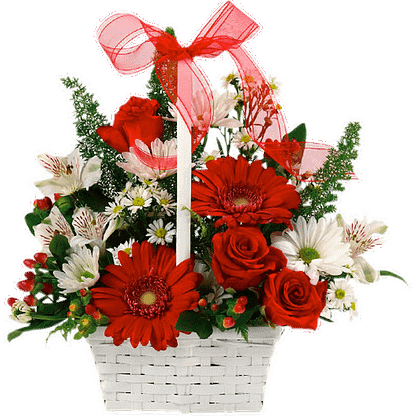 Flower arrangement for any occasion with daisies, roses, alstroemeria and more, arranged in a white basket