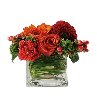 Flower arrangement for All Occasions with Roses, carnations, gerbera daisy, mums and more arranged in a cube vase
