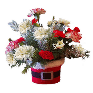 Christmas flower arrangement with carnations, poms and Christmas greenery arranged in Santa's hat