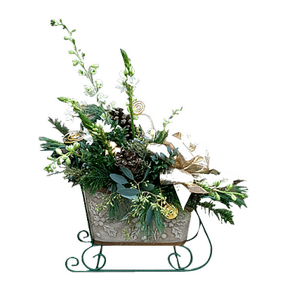 Christmas flower arrangement with evergreens, seeded eucalyptus, star of Bethlehem, larkspur and more arranged in a sleigh