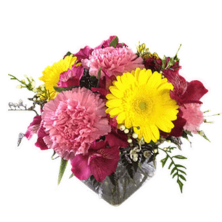 Flower arrangement for any occasion with carnations, alstroemeria, gerberas and more arranged in a cube vase