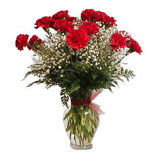 Flower arrangement for All Occasions with red carnations, baby's breath and leather fern arranged in a garden vase