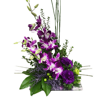 Flower arrangement for All Occasions with bombay orchids, carnations, hypericum berries and more arranged in a contemporary style container
