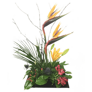 Flower arrangement for All Occasions with birds of paradise, daylilies, alstroemeria and more arranged in a contemporary style container