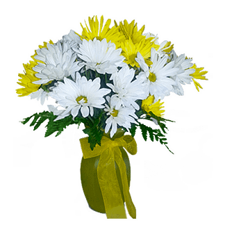 Flower arrangement for all occasions arranged with daisies and greenery in a glass vase