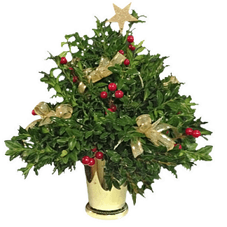 Small Christmas tree with boxwood, berries, decorative bows and star in plastic utility container