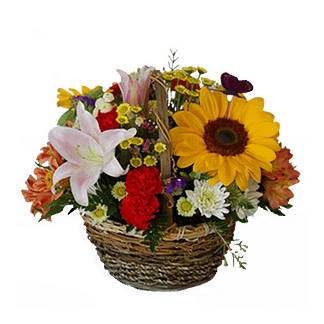 Flower arrangement for All Occasions with sunflowers, mini carnations, chamomille, and more arranged in a handled basket