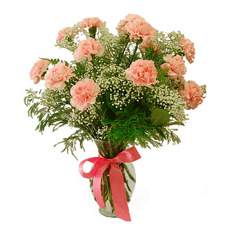 Flower arrangement for all occasions with carnations, baby's breath, salal and tree fern in a garden vase